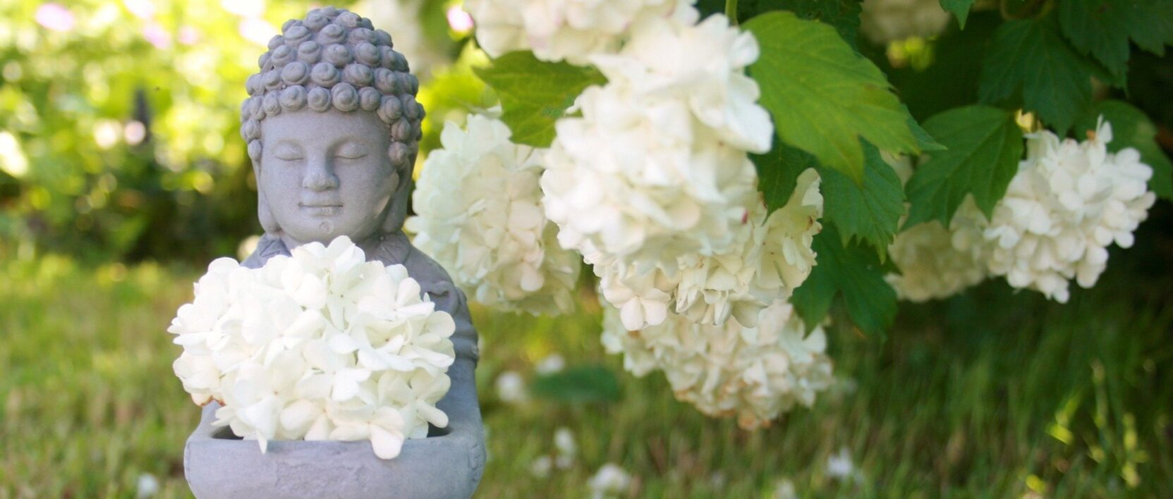 Namaste Online Today Welcome Image